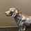 Silvered Labrador model