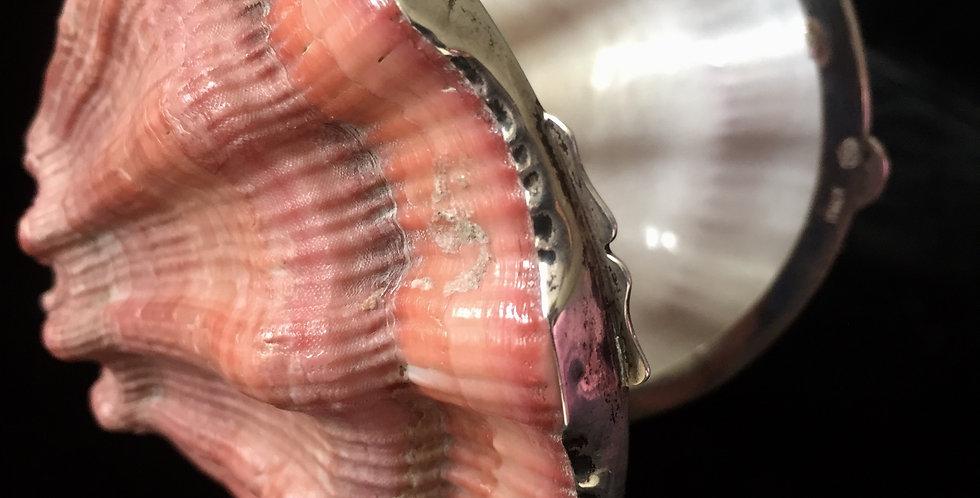 Italian Specimen Shell Trinket Box
