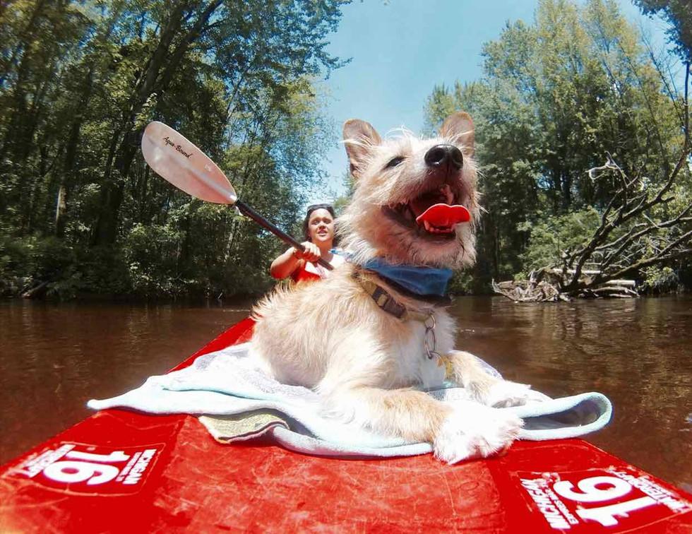 eddy kayak classic.jpg