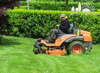 Nos conseils pour une belle pelouse!