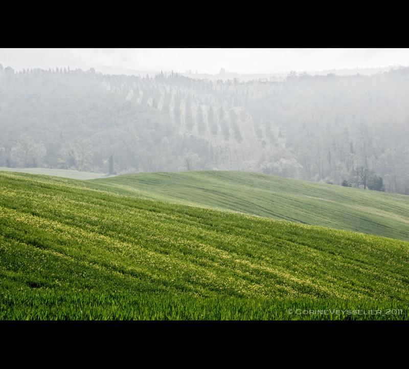 tncv_toscana-nebbia3