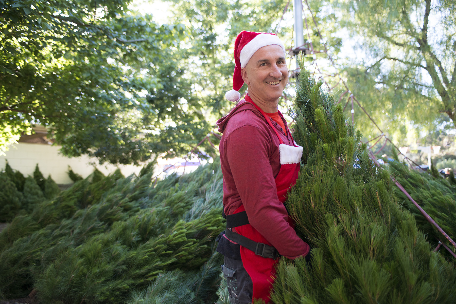 Elwood-Community-Market_Christmas-Trees.