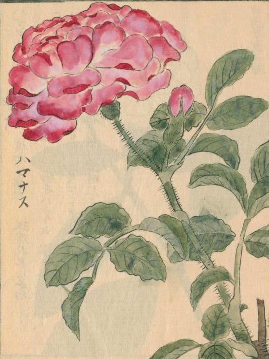 日本の香り1