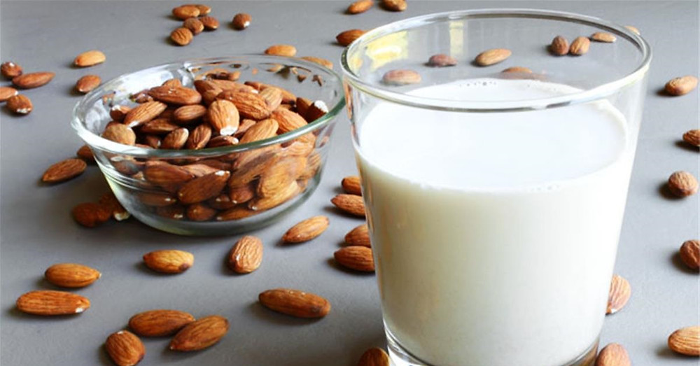 leites vegetais 2