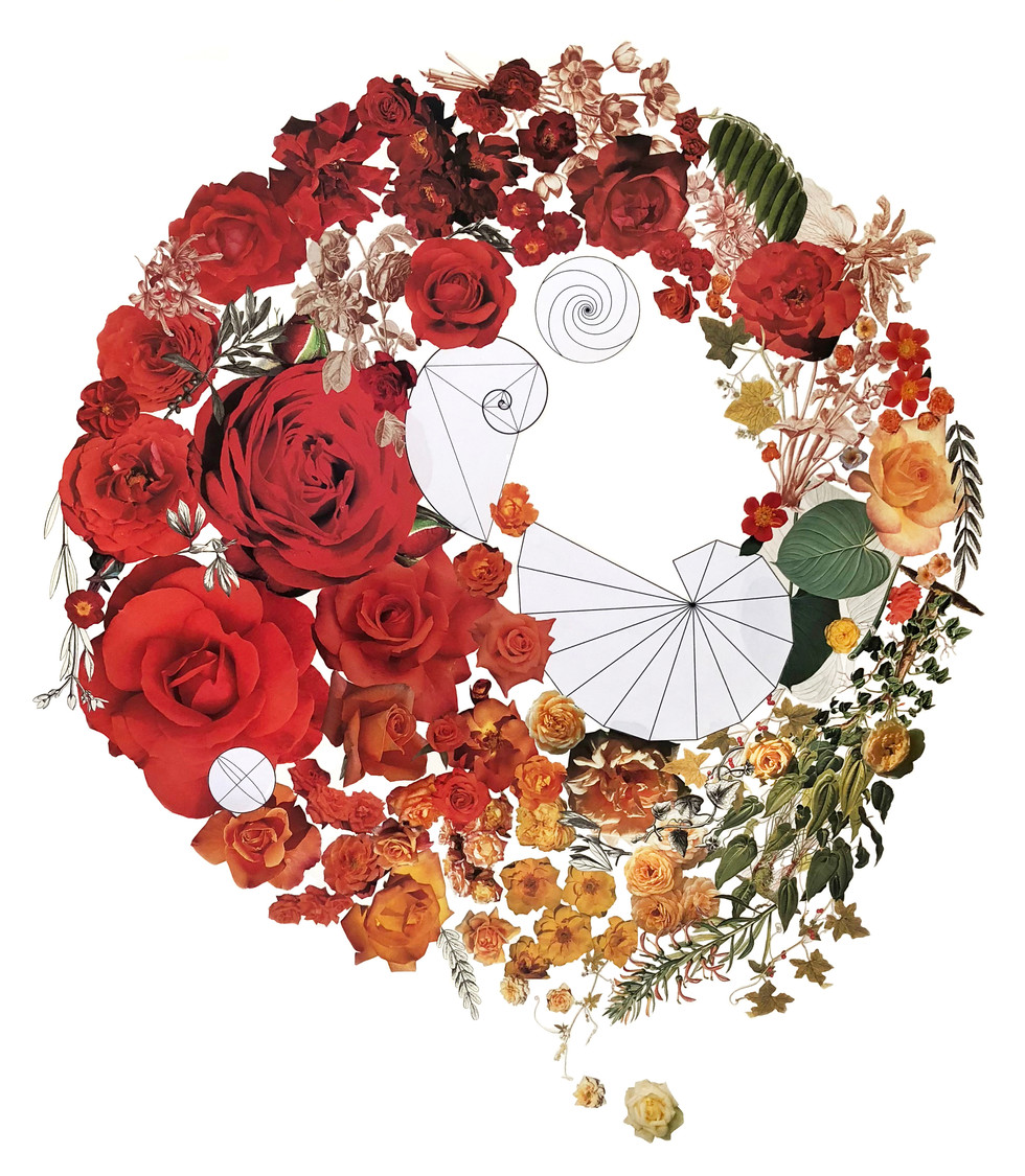 Color Wheel with Roses
