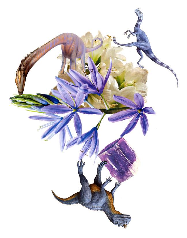 Prehistoric Purples