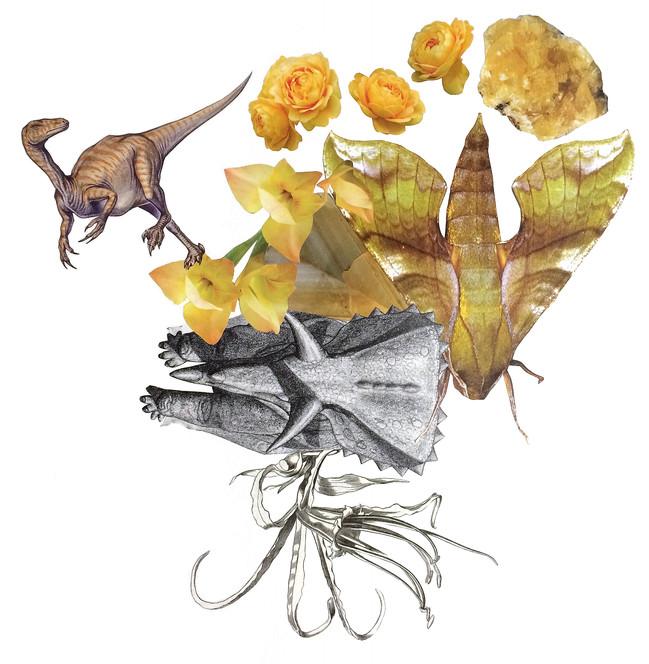 Prehistoric Yellows