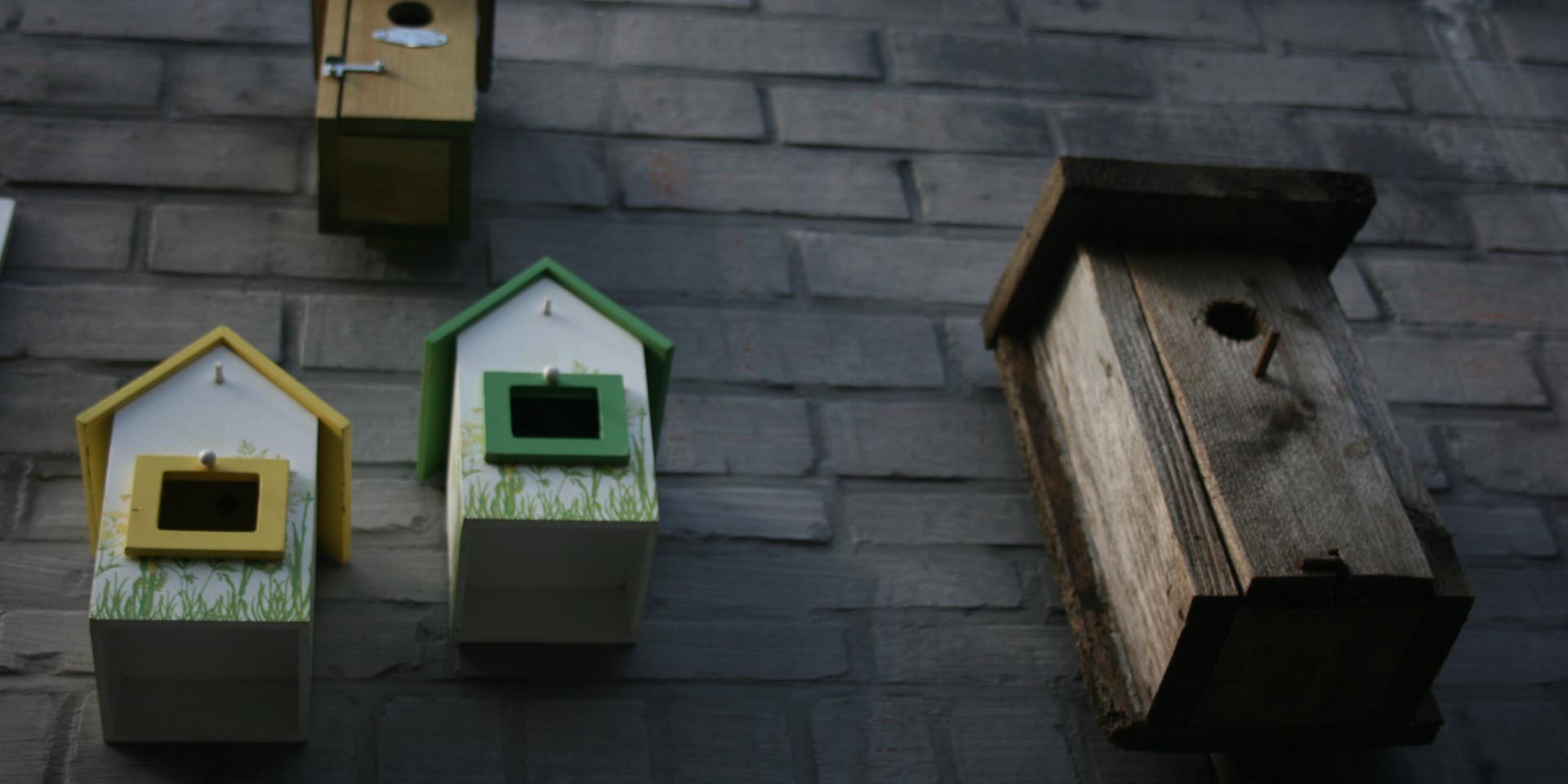 CVC huisjes vogels IMG_4999.JPG