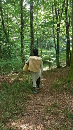 Milla balade en forêt à l'ancien