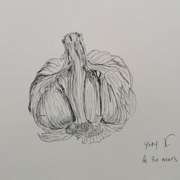 Cours de dessin botanique