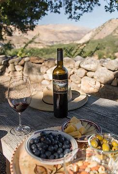 Mesa Del Sol wine.jpg