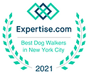 Expertise_badge.png