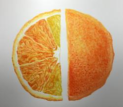 Orange Segment and Skin