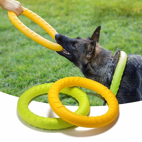 Dog Agility Training Toy