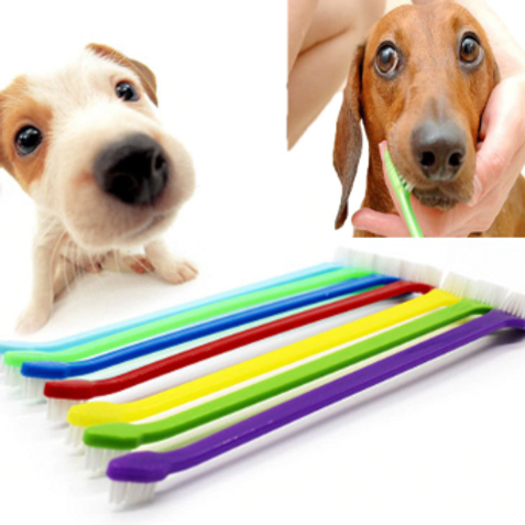 Cat And Dog Toothbrush