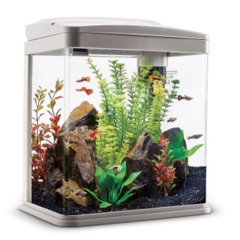Mini LED Fish Tank