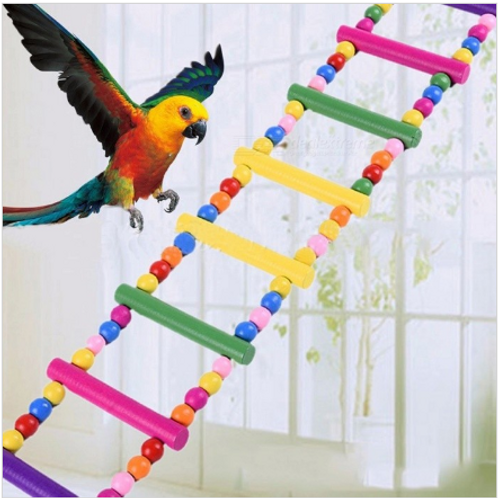 Bird Wooden Swing Ladder For Training