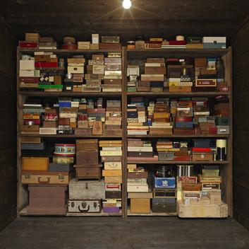 Mark Dion, Memory Box, 2016, detail view