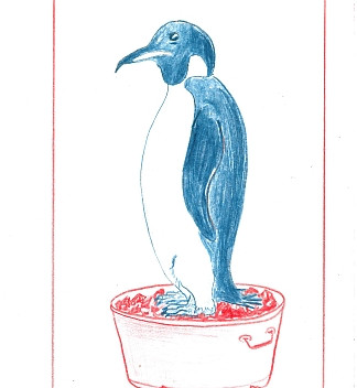 Mark Dion, Stilllife in Black and White, 2012  red and blue pencil on paper, 13.3x20.5cm