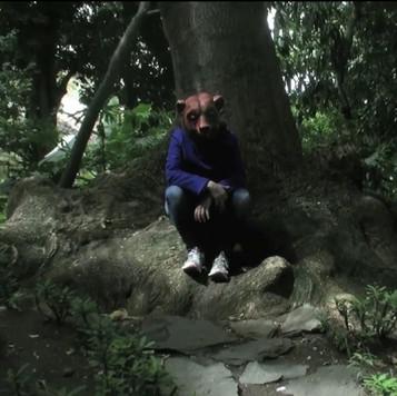 Eli Cortiñas, Paraiso Animal, 2015, video