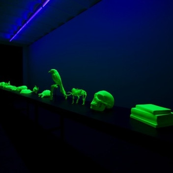Mark Dion, The Natural Sciences, 2015, sixteen fluorescent 3D printed objects, synthetic materials, dimensions variable