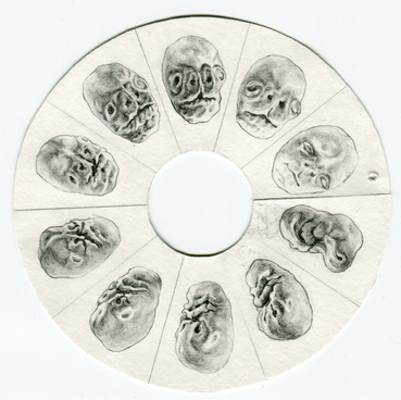 Klara Hobza, Portrait (facial development), 2019, detail view with paper only