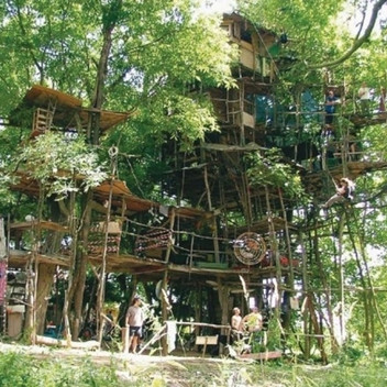 Jakub Nepras, Tree House Installation, ongoing project since Jakub's childhood