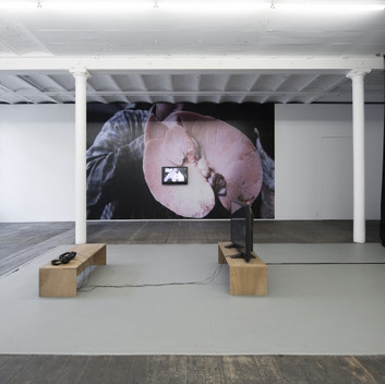Klara Hobza, You came here for the killing, didn't you, installation view, Waldburger Wouters, 2016