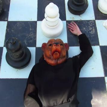 Eli Cortiñas, Paraiso Animal, 2015, video excerpt