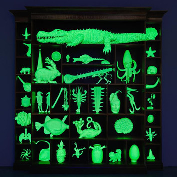 Mark Dion The Phantom Museum (Wonder Workshop), 2015, walnut cabinet, objects with white glow in the dark paint, black light 102x96x12 inches; 259.1x243.8x30.5cm