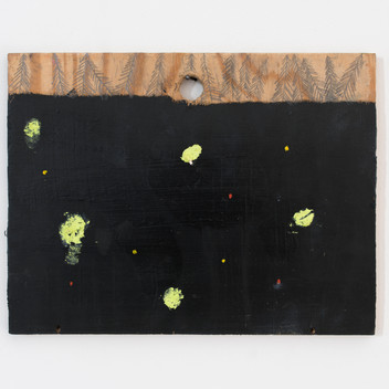 The Earth and the Universe in my Garden, 2017/2019, oil on wood, 21x28cm
