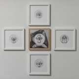 Klara Hobza, Circular motions, all 2020, pencil on paper, 22.5x22.5cm:   Circulation reptiles (left) Man´s flow of blood (center) Circulation mammals (middle top) Circulation amphibians (middle bottom) Circulation fish (right)