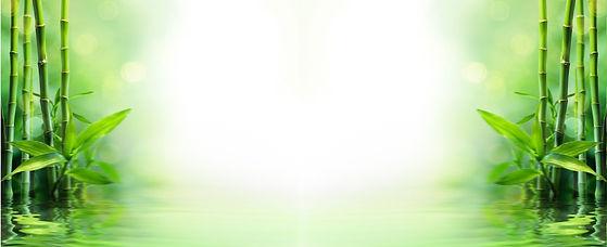 Espaco Massagem Lapa Isato Saude e Bem Estar (11) 3435 5352