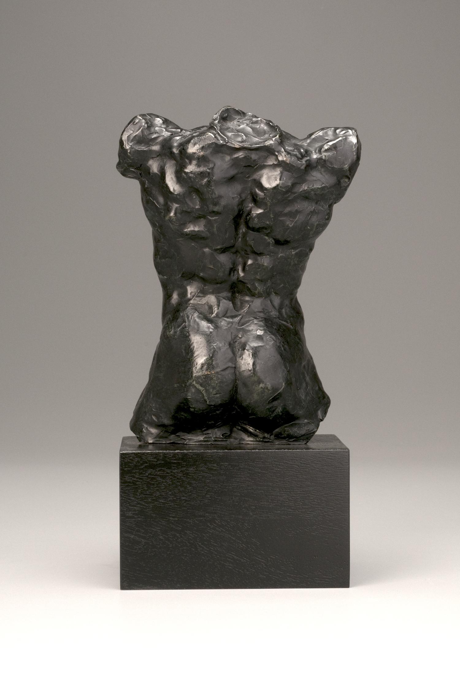 rodin torso