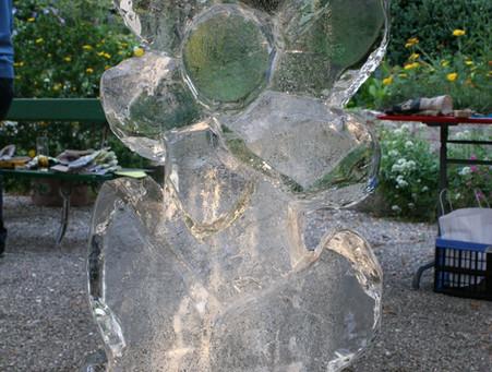 Eiskulputuren.Blume