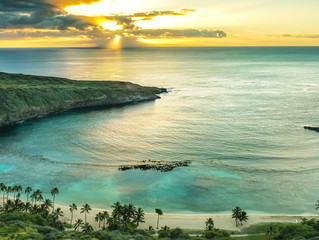Tapping into the natural healing powers of the Hawaii