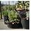 Thumbnail: Plantenzak Vlies Stof Rond 20 Liter Groeizak 5 Stuks Set Tuin Terras Aankleden
