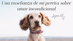Una enseñanza de mi perrita sobre amor incondicional