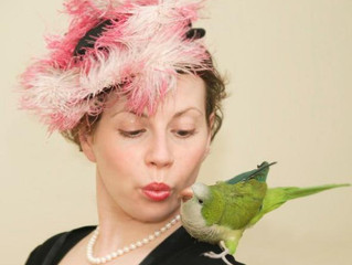 The lady with the bird - Mandi Gould