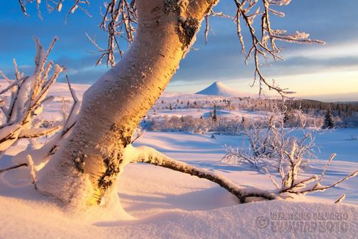 Mount Städjan