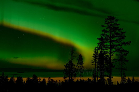 Aurora Borealis over Särna