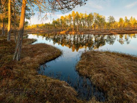 Evening Reflections  • Särna, Dalarna, Sweden, May 2020