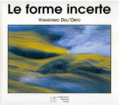 Cover-Forme Incerte.jpg