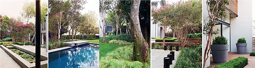 Leisure Garden Article Image 05.jpg