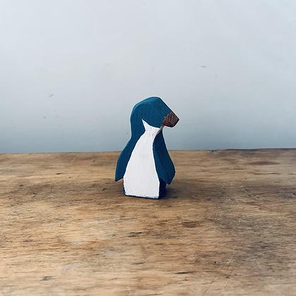 Korora/Little Blue Penguin
