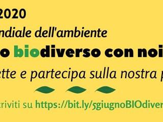 ARCI COMO Web TV/ Palinsesto 5 giugno 2020