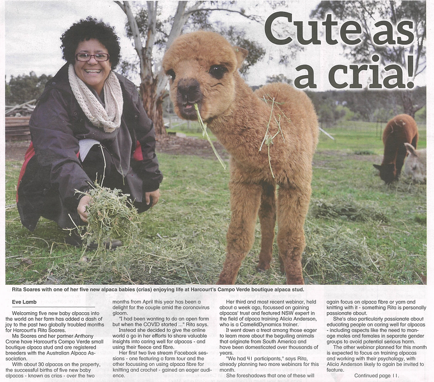 Castlemaine Mail 5 June 2020 page 1.PNG