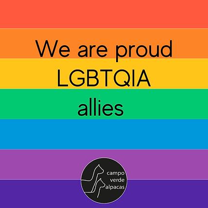 Rainbow LGBTQIA ally.png