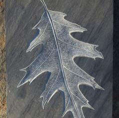 Carved Oak Leaf in slate