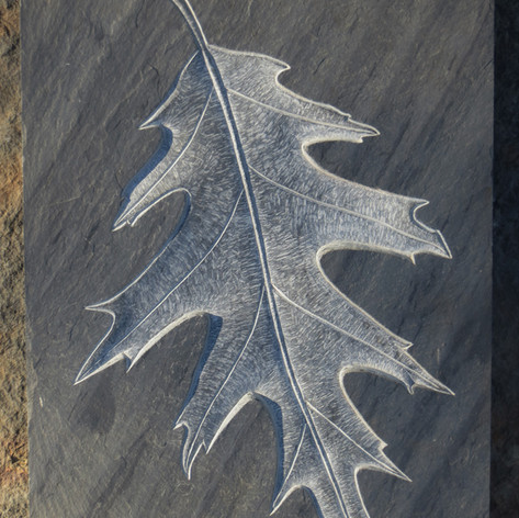 Carved Oak Leaf in slate